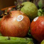 Super Foods Peru inicia en Alemania segunda fase de su campaña internacional