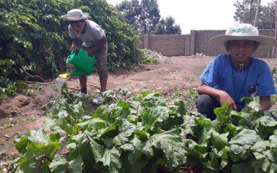 ACP promueve la agricultura amigable con el ambiente