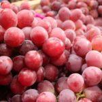 La uva fresca lidera las agroexportaciones entre enero y abril 2019