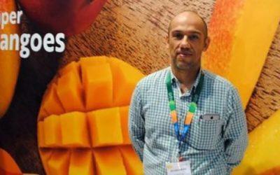APEM: Se busca cambiar tratamiento sanitario para evitar la mosca de la fruta en el mango que se exporta a EE.UU.
