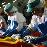 Cuatro países asiáticos entre los quince principales mercados destinos de las agroexportaciones no tradicionales de Perú