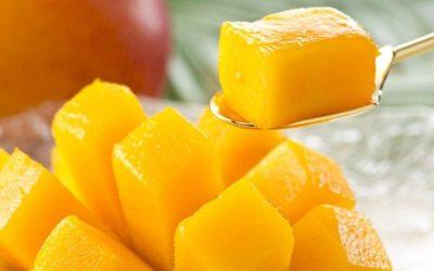 Presente y Futuro del Mango en EE.UU.