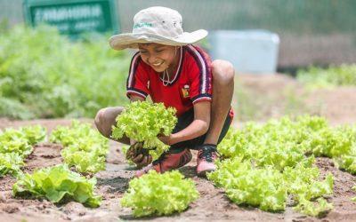 ACP promueve la alimentación saludable de estudiantes en Pacanga