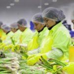 """Complejo Agroindustrial Beta: """"Abriremos una oficina comercial en España para atender el sur de Europa"""""""