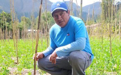"""Aníbal Chávez, agricultor: """"Necesitamos capacitarnos para exportar el holantao"""""""