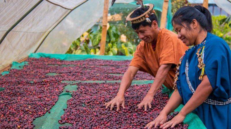 Promueven café peruano de especialidad en Singapur